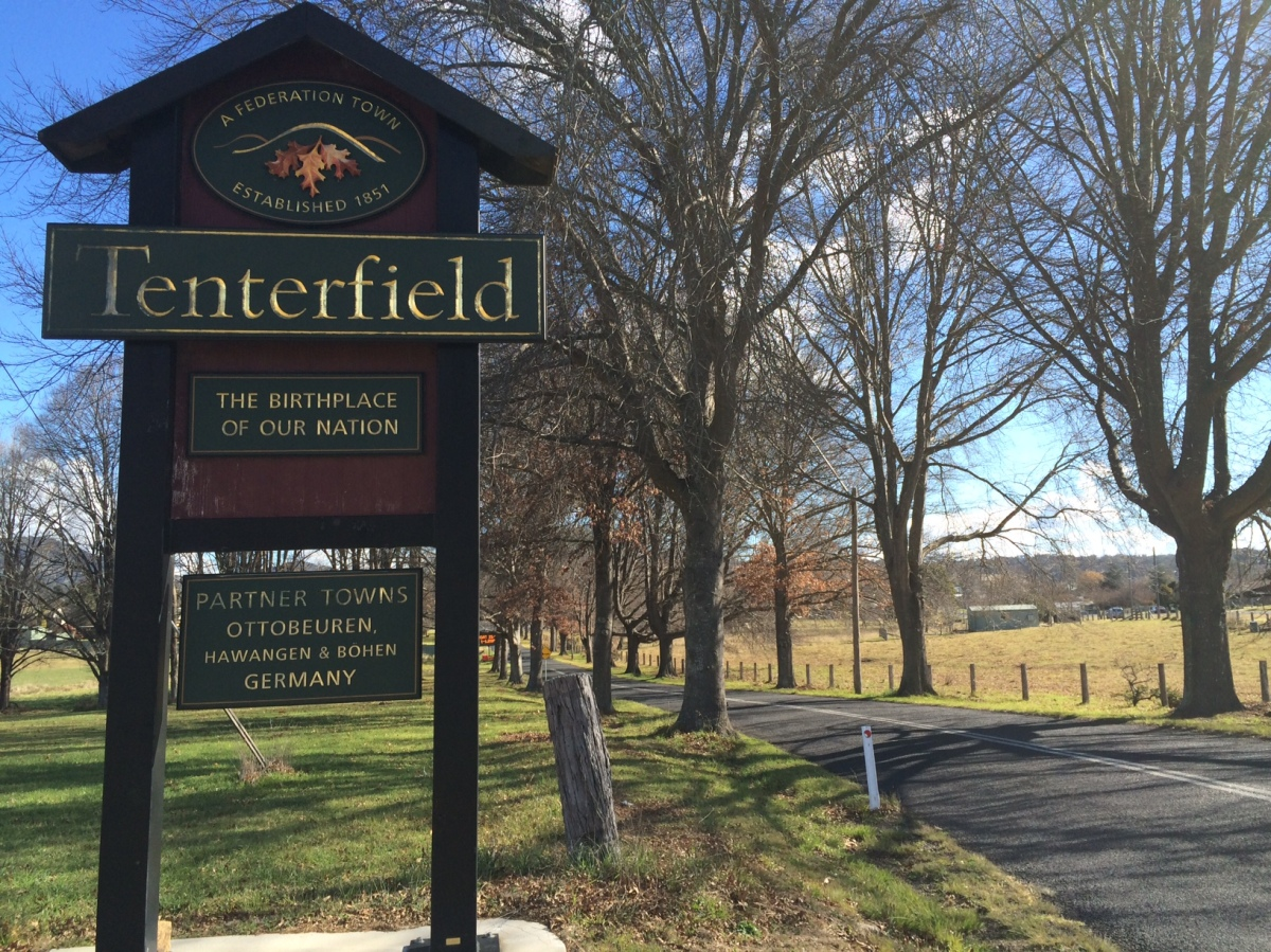 Welcome to Tenterfield, Winter Avenue of Trees